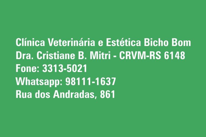 Clínica Veterinária e Estética Bicho Bom